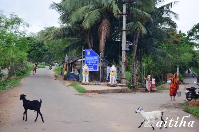 A Day at Raghurajpur